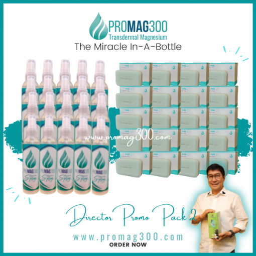 Promag 300 Director Promo Pack 2